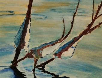 "Oiseau de glace 8"" x 10"" 3/4"